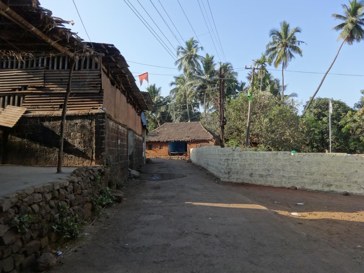 Velas Turtle Festival, Ratnagiri
