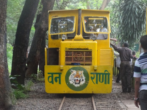 Vanrani Toy Train