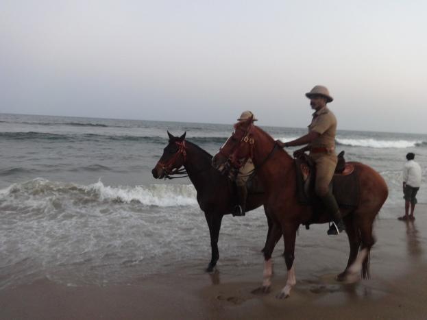 Police man on horse as a safeguard