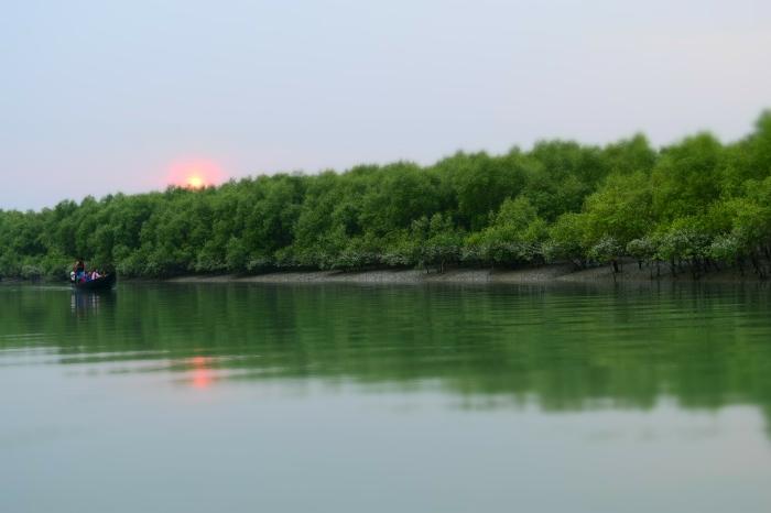The Sundarban