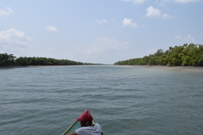 Channel of the Sundarban delta