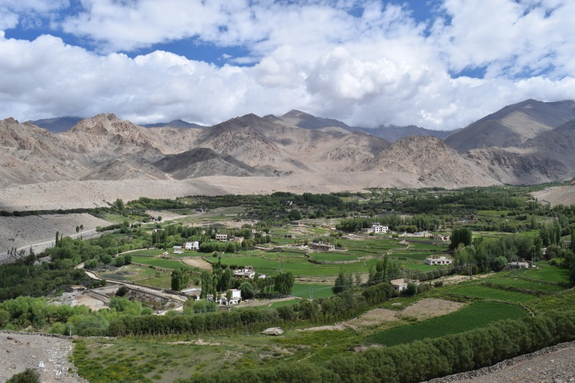 Leh City View